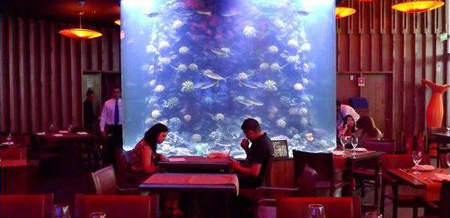 Abren Costamia Restaurant Aquarium en el Costanera Center